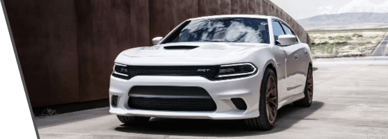front view white dodge charger